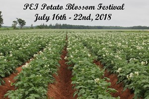 PEI Potato Blossom Festival Inc.